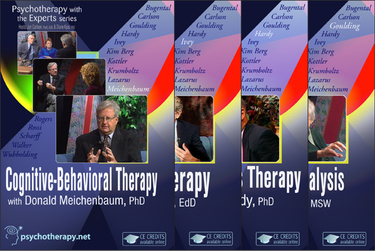 Psychotherapy with the Experts: 15-Video Series