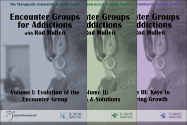 Encounter Groups for Addictions (3-Video Series)