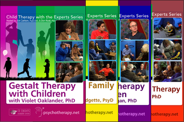 Child Therapy with the Experts: 11-Video Series