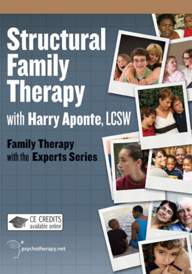 family therapy brother sister supervision