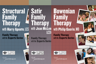 Family Therapy with the Experts: 10-Video Series