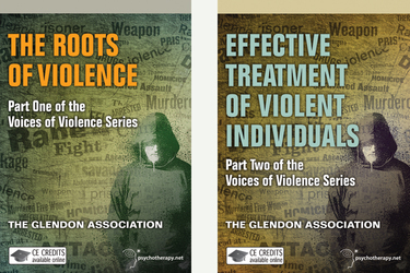 The Voices of Violence Series (2-Video Series)