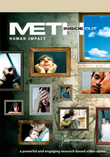 Meth Inside Out: I. Human Impact