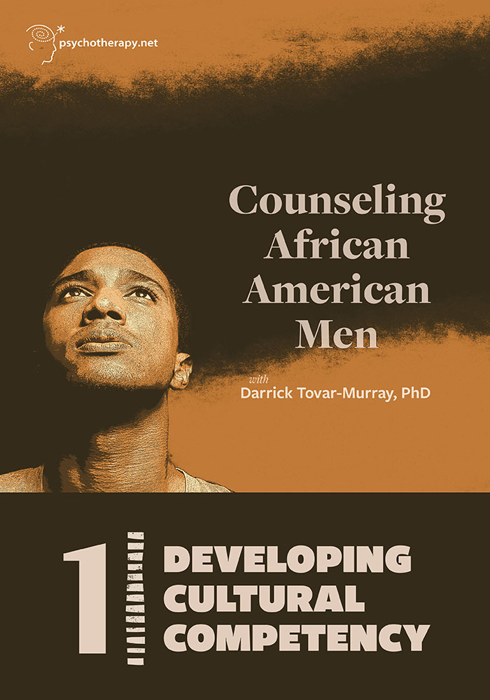 Counseling African American Men, Volume 1: Developing Cultural Competency