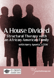 A House Divided: Structural Therapy with a Black Family