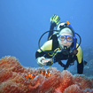 Lessons from the Depths: Scuba Diving and Psychotherapy with Men